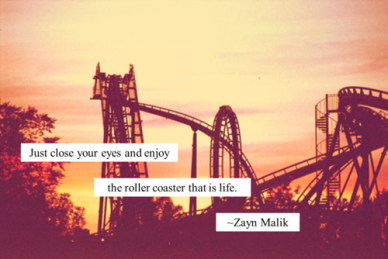 Enjoy the rollercoaster that is life